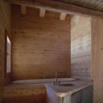 Bathroom, wood roofing
