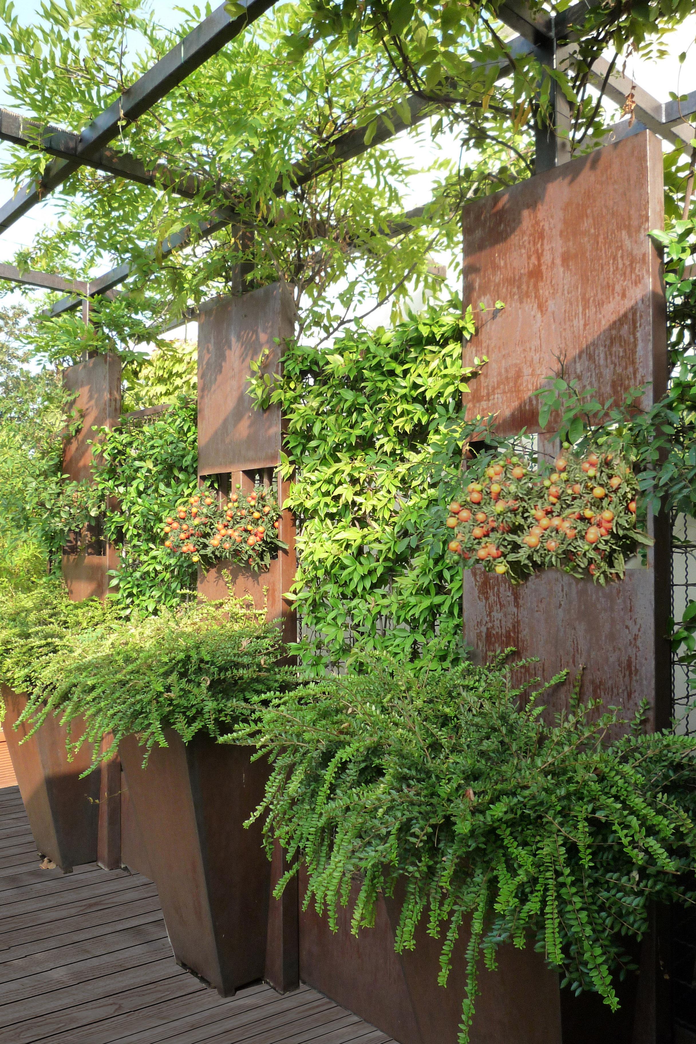 Hanging Garden Architetto Cristina Rampazzo